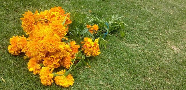 ramo de flores de Cempasuchill