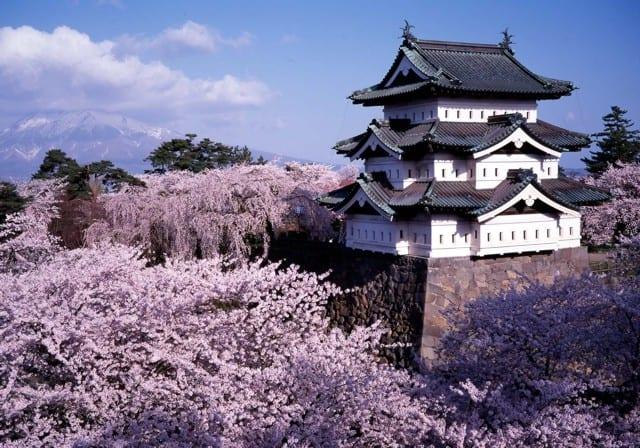 castillo-tsuyama