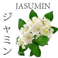 FLORES JAPONESAS 10 JASUMIN