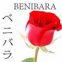 FLORES JAPONESAS 12 BENIBARA