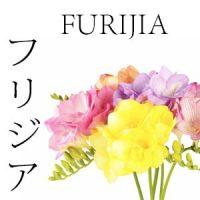 FLORES JAPONESAS 18 FURIJA