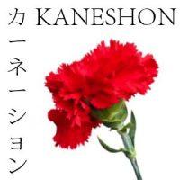FLORES JAPONESAS 8 KANESHON