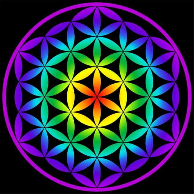 Flor de la vida de colores